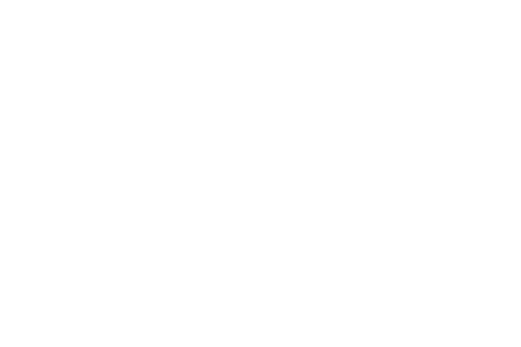 Evolmix Equinos